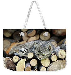 Weekender Tote Bag featuring the photograph Cat Resting On A Heap Of Logs by Michal Boubin