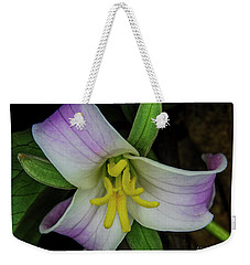 Weekender Tote Bag featuring the photograph Catesby Trillium by Barbara Bowen