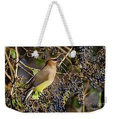 Cedar Waxwing Eating Berries Weekender Tote Bag