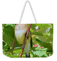 Cedar Waxwing Weekender Tote Bag by Sean Griffin