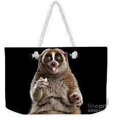 Close-up Lemur Slow Loris Isolated Black Background Weekender Tote Bag