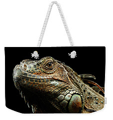 Closeup Green Iguana Isolated On Black Background Weekender Tote Bag by Sergey Taran
