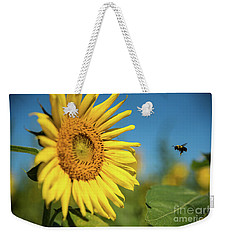 Weekender Tote Bag featuring the photograph Coming In For A Landing by Sandy Molinaro