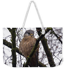 Common Kestrel Weekender Tote Bag by Matt Malloy