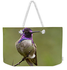 Costa's Hummingbird, Solano County California Weekender Tote Bag