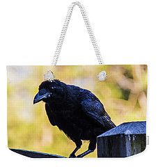 Weekender Tote Bag featuring the photograph Crow Perched by Jonny D