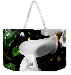 Weekender Tote Bag featuring the photograph Cyclamen by Mindy Newman