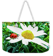 Daisy Flower And Ladybug Weekender Tote Bag by Cesar Vieira