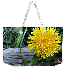 Weekender Tote Bag featuring the photograph Dandelion by Robert Knight