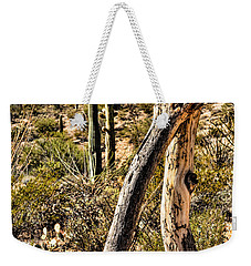 Weekender Tote Bag featuring the photograph Desert Landscape by Lawrence Burry