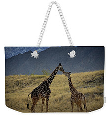 Weekender Tote Bag featuring the photograph Desert Palm Giraffe 001 by Guy Hoffman