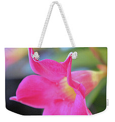 Weekender Tote Bag featuring the photograph Dipladenia by Victor K