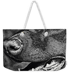 Doberman Face Weekender Tote Bag