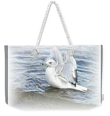 Weekender Tote Bag featuring the photograph Dreamy Seagull by Susan Dimitrakopoulos