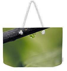 Weekender Tote Bag featuring the photograph Droplet by Cendrine Marrouat