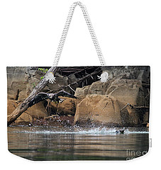 Weekender Tote Bag featuring the photograph Eagle Attack II by Douglas Stucky