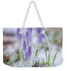 Early Spring Crocus Weekender Tote Bag