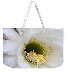 Weekender Tote Bag featuring the photograph Easter Lily Cactus by Phyllis Denton
