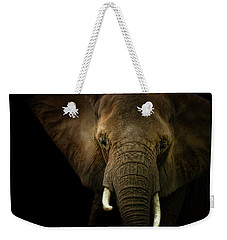 Elephant Against Black Background Weekender Tote Bag by James Larkin