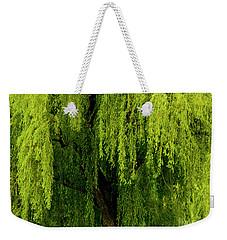 Enchanting Weeping Willow Tree  Weekender Tote Bag
