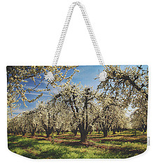 Weekender Tote Bag featuring the photograph Everything Is New Again by Laurie Search