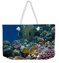 Exquisite Butterflyfish In The Red Sea Weekender Tote Bag