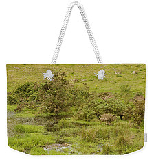 Weekender Tote Bag featuring the photograph Fairy Tree In Ireland by Ian Middleton