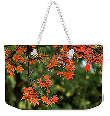 Weekender Tote Bag featuring the photograph Fall Leaves by Inge Riis McDonald