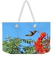 Feeding  Anna's Hummingbird Weekender Tote Bag by Robert Bales