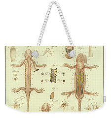 Fire Salamander Anatomy Weekender Tote Bag