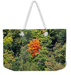 Weekender Tote Bag featuring the photograph First Autumn Color by Alan L Graham