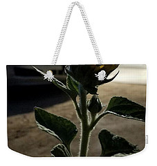 Weekender Tote Bag featuring the photograph First Bloom by Angela J Wright