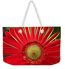 Gerbera Daisy Weekender Tote Bag