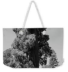 Giant Sequoia, Sequoia Np, Ca Weekender Tote Bag