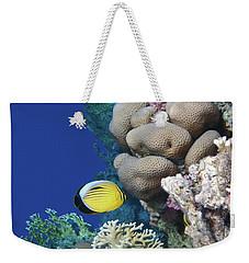Glorious Red Sea World 3 Weekender Tote Bag