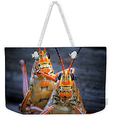 Grasshoppers In Love Weekender Tote Bag by Mark Andrew Thomas