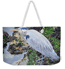 Weekender Tote Bag featuring the photograph Great Blue Heron by AJ Schibig