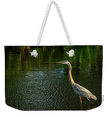 Great Blue Heron Delray Beach Florida Weekender Tote Bag