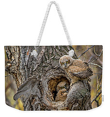Great Horned Owlets In A Nest Weekender Tote Bag