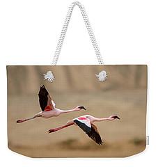 Greater Flamingos Phoenicopterus Roseus Weekender Tote Bag