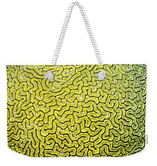 Weekender Tote Bag featuring the photograph Grooved Brain Coral by Perla Copernik
