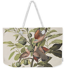 Ground Dove Weekender Tote Bag by John James Audubon
