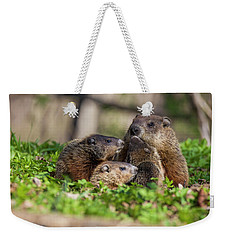 Happy Family Weekender Tote Bag by Mircea Costina Photography