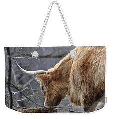 Highland New Born Weekender Tote Bag