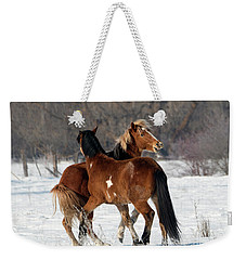 Weekender Tote Bag featuring the photograph Horseplay by Mike Dawson