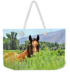 Howdy Weekender Tote Bag by Marilyn Diaz