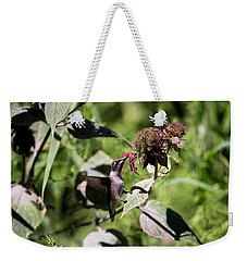 Humming Bird  Weekender Tote Bag