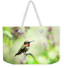 Weekender Tote Bag featuring the photograph Hummingbird II by Christina Rollo