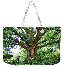 Weekender Tote Bag featuring the photograph Inwood Ginkgo  by Cole Thompson