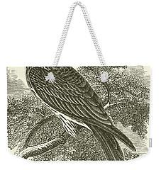 Kite Weekender Tote Bag by English School
